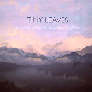 Tiny leaves   a good land  an excellent land 1
